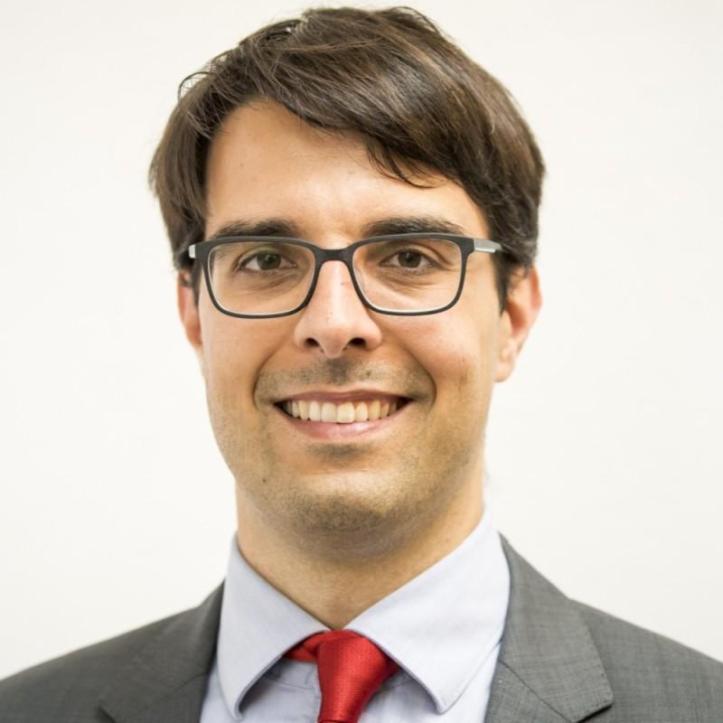 Dr. Dr. Hanjo Hamann